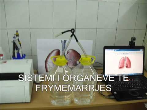 Type ii sëmundje hypertensive