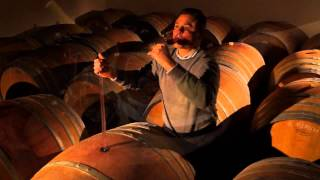 The world of wines in Friuli Venezia Giulia - Italy.mp4