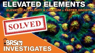 Part II - Elevated Alkalinity and Calcium for faster growth? | BRStv Investigates
