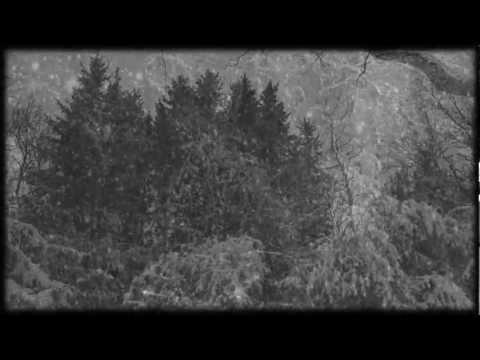 Frostwork - Dunkelheit ( Burzum Cover )