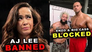 10 Wrestlers Banned & Blocked from Returning to WWE