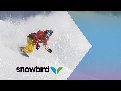 Serious Snowbird Pow  - © Snowbird