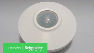 Installation Video ARGUS Motion Sensor DALI 230V by Schneider Electric