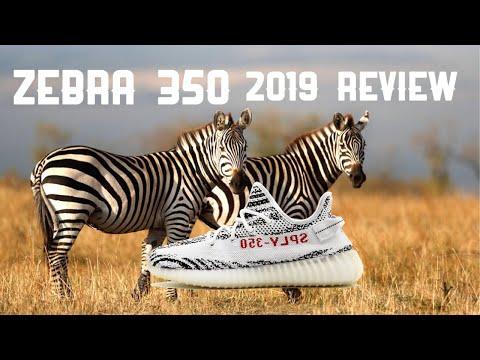 Zebra 350 YEEZY Review in 2019