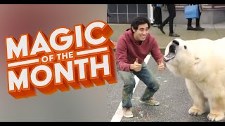 New Years Resolution Tricks | MAGIC OF THE MONTH - January 2020