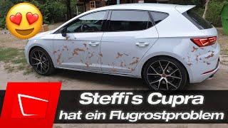 Steffi`s Cupra hat nach 6 Monaten schon Flugrost.... FXProtect Iron Remover und ADBL Vampire Liquid
