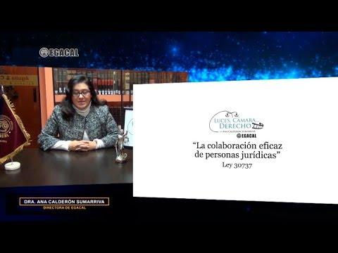 Programa 85 - La colaboración eficaz de personas jurídicas - Luces Cámara Derecho - EGACAL