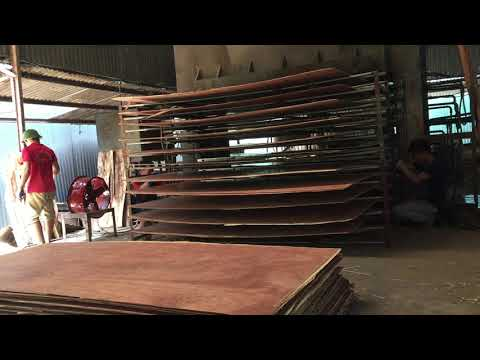Vietnam packing plywood -  After being heat-pressed at HG factory