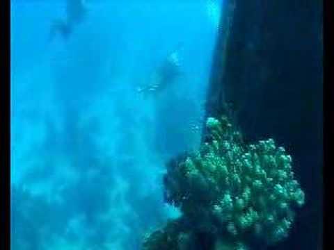 Wracks im Roten Meer, Rotes Meer allgemein,Ägypten