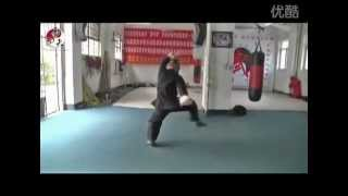Tang Shou Quan 15th generation master
