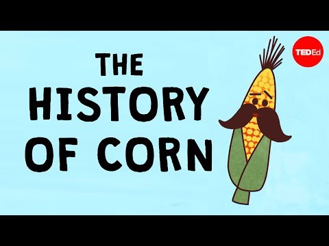 How did Corn Take Over the World?