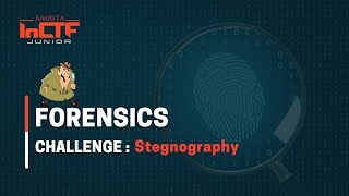 Watch Introduction to Stegnoraphy on YouTube