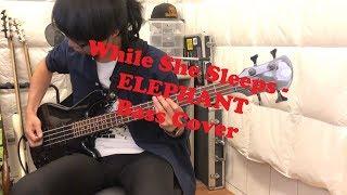 While She Sleeps   ELEPHANT (Bass Cover)