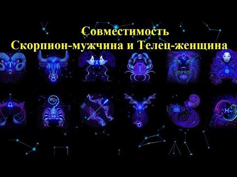 Совместимость Скорпион-мужчина и Телец-женщина