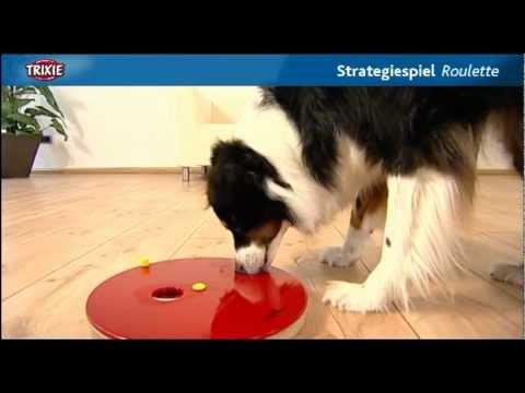 Dog Activity Roulette Interaktives Hundespielzeug Intelligenzspielzeug