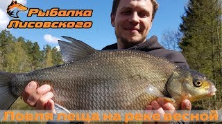 Ловля рыбы фидером на малой реке