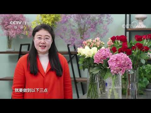 , title : '《生活提示》 20210204 让鲜花持久保鲜的妙招管用吗| CCTV