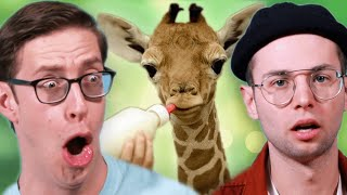 The Try Guys Watch Animal Births For The First Time