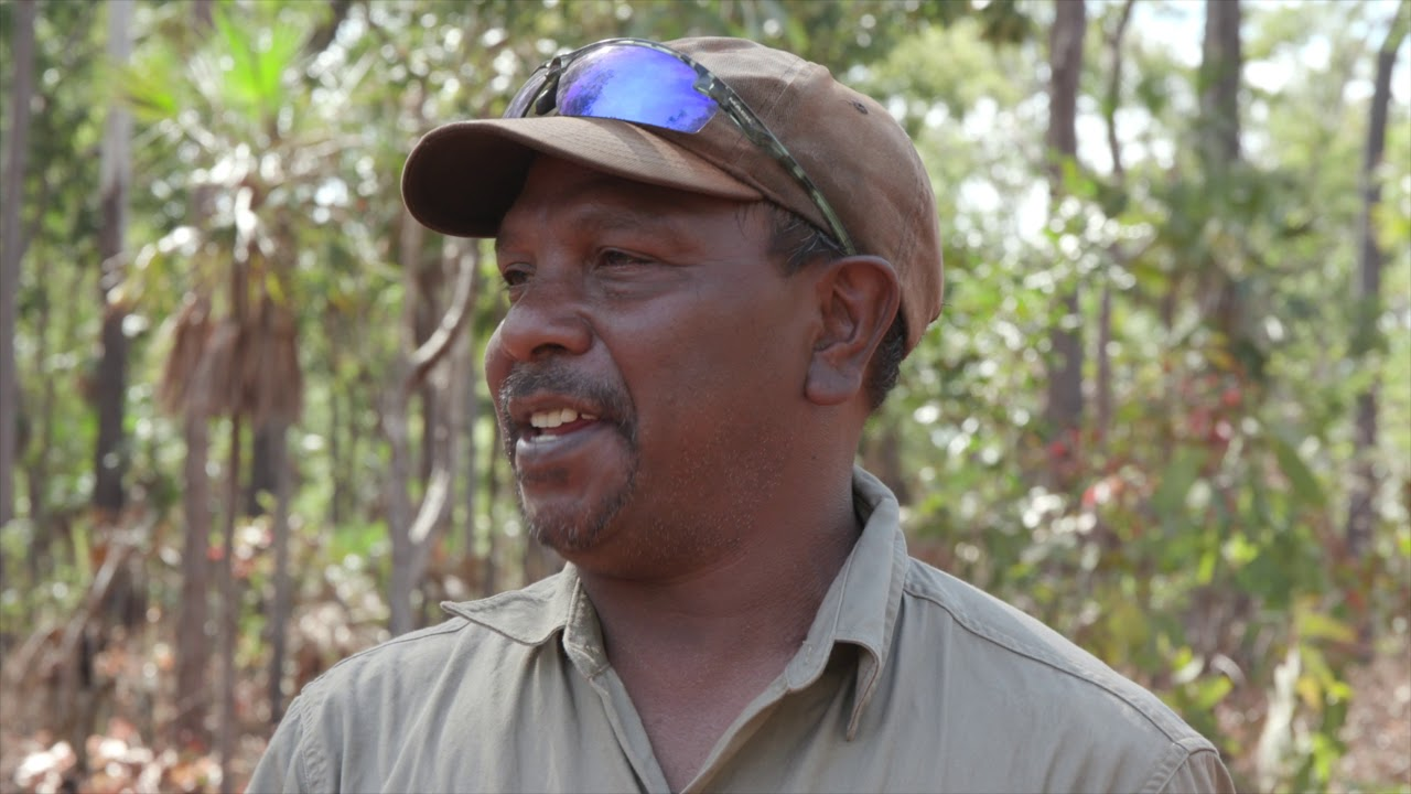 Protecting Tiwi mammals