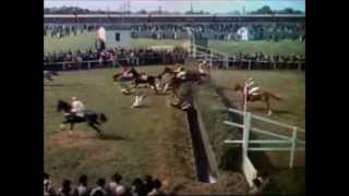 Trailer of National Velvet (1944)