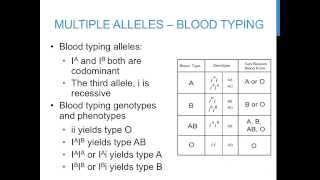 Punnett Square Practice Problems (multiple Alleles)