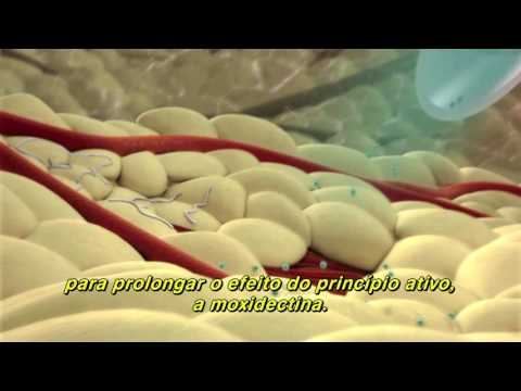 Giardia és férgek gyógyszer
