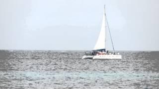 preview picture of video 'Catamaran Arrecife Puerto Morelos Riviera Maya'