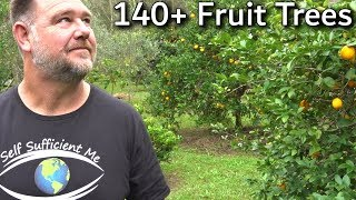 EVERY Fruit Tree Were Growing Full Garden Tour