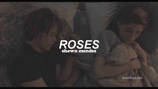 Shawn Mendes   Roses (Traducida Al Español)