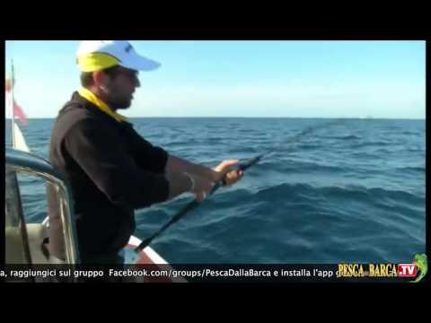 Le merci per pescare nella città di Krasnoyarsk