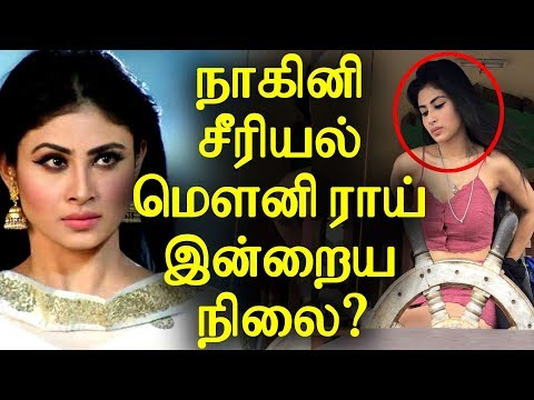Nagini 1st May 2018 Sun Tv Tamil Serial Mouny Roy Personal