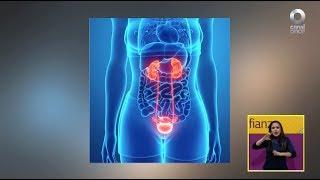 Diálogos en confianza (Salud) - Incontinencia urinaria