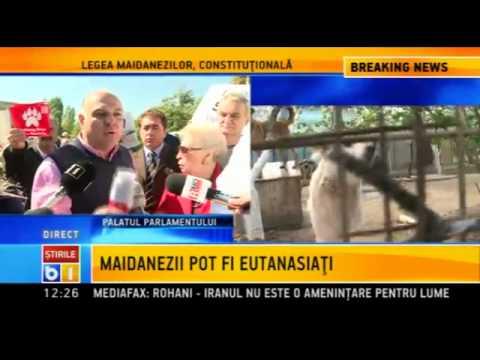 Vadim Tudor: Va blestem pe toti care votati eutanasierea cainilor