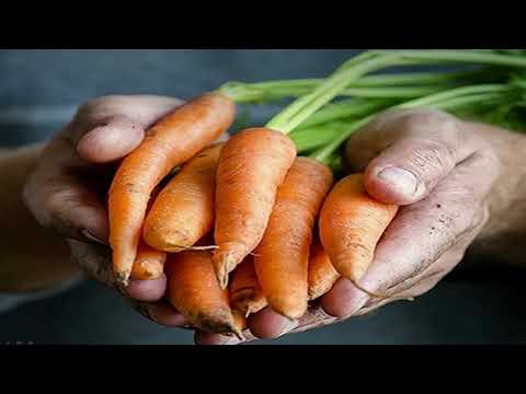 mp4 Healthy Food For Cancer, download Healthy Food For Cancer video klip Healthy Food For Cancer
