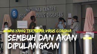 WNI di Singapura yang Tertular Virus Corona Dinyatakan Sudah Sembuh