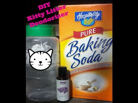 How to Save Money DIY kitty litter deodorizer