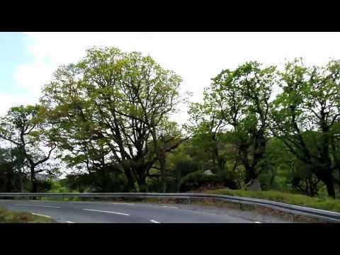 BACKSEAT RHYTHM (CH) - MINDBENDER (IRLAND)