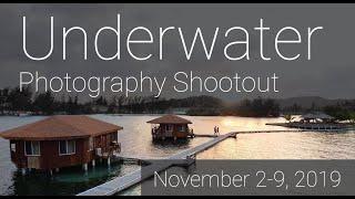 Roatan Underwater Photography Shootout
