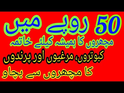 , title : 'how to protect pigeons from mosquitoes||how to save birds from mosquitoes||machron ka khatma||