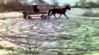 Деревенский дрифт.3gp