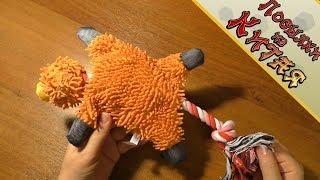 Любимая игрушка моей собаки с Алиэкспресс. Обзор, распаковка  Товары с Китая