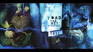 """Toad the Wet Sprocket - """"Throw it all away"""""""