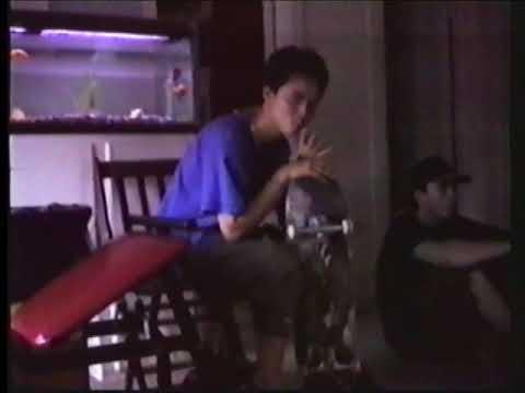 Skank Skates: Mini Birdhouse Project w/Titles 1993