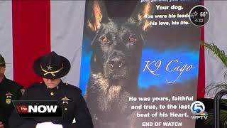 Emotional memorial service held for PBSO K-9 Cigo killed in the line of duty