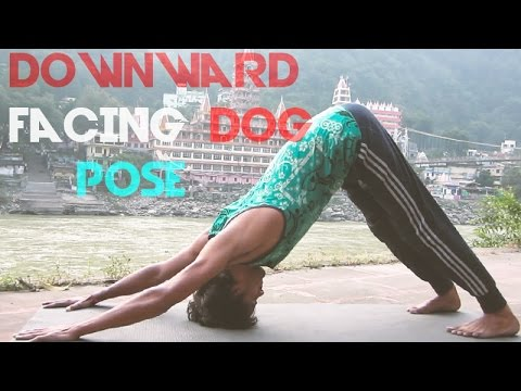 , title : 'Yoga for Beginners - Downward Facing Dog Pose | Adho Mukha Svanasana'