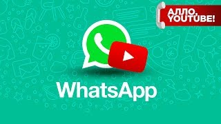 YouTube начал интеграцию в WhatsApp - Алло, YouTube! #117