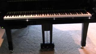 Peng Lin playing  Franz Liszt Hungarian Rhapsody No. 13