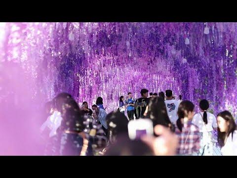 العرب اليوم - شاهد: الصينيون ينظمون أنشطة عدة احتفالا بمهرجان منتصف الخريف