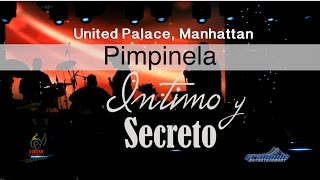 PIMPINELA UNITED PALACE