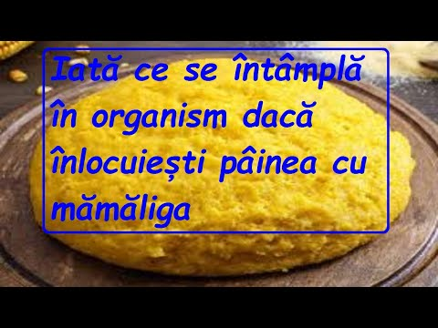 Papillomavirus origine